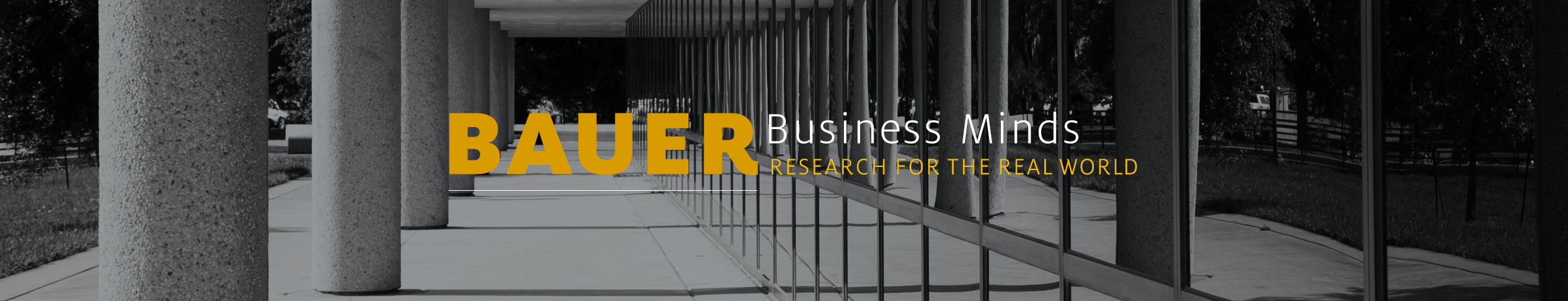 Bauer Business Minds: Research for the Real World